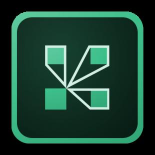 گزینه برگزاری دوره های آنلاین بر بستر Adobe Connect
